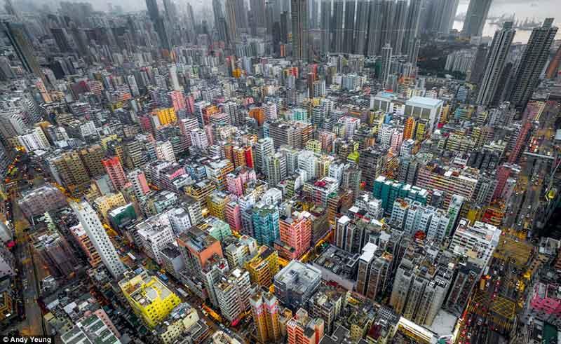 香港摩天大厦建筑群1