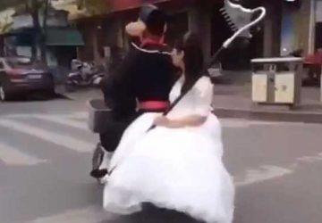 猪八戒电动车载媳妇