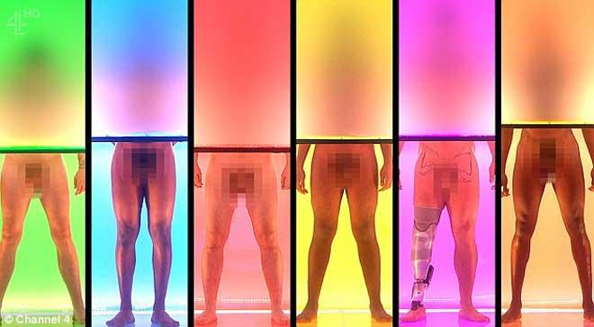 约会真人秀在透明箱柜中展示身体