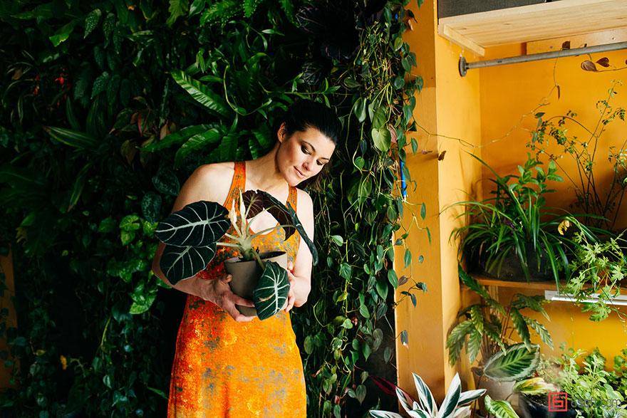 城市田园:500棵植物将公寓变成绿色丛林2