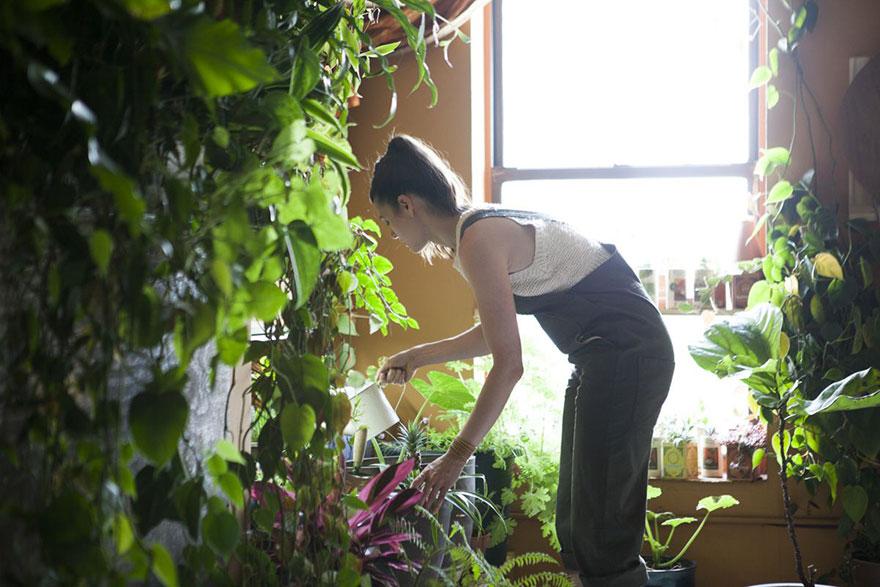城市田园:500棵植物将公寓变成绿色丛林5