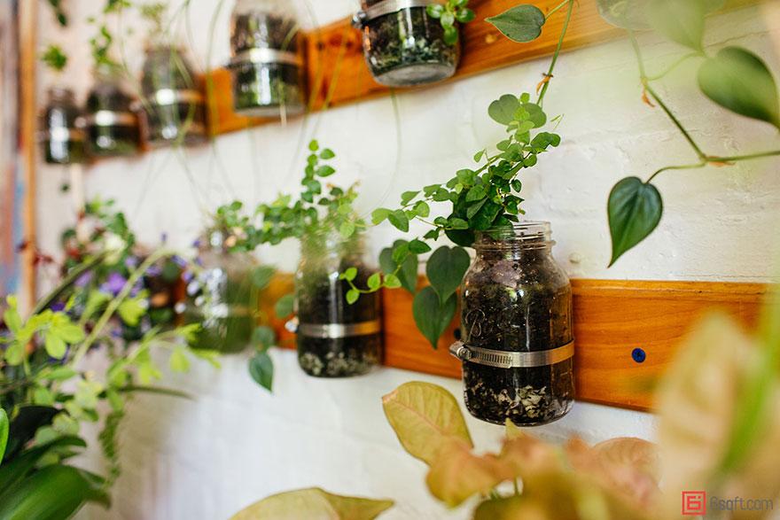 城市田园:500棵植物将公寓变成绿色丛林7