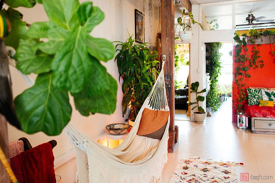 城市田园:500棵植物将公寓变成绿色丛林8