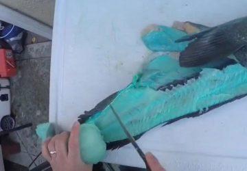 蓝血族蛇鳕被破膛 惊艳如蓝色玉石2