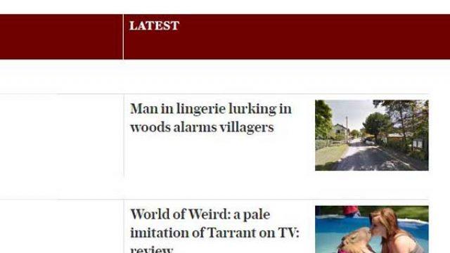 每日电讯报有趣新闻:Telegraph weird News