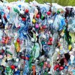 塑料垃圾堆海床?地球最深海沟小虾体内发现塑料微粒